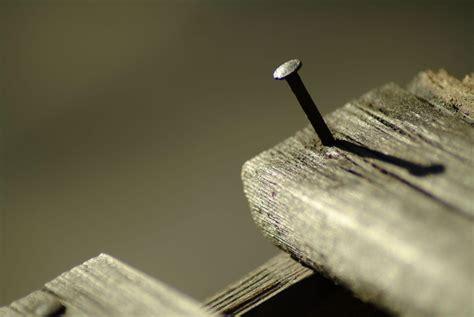 build  wall frame  screws diy home repair