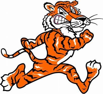 Tiger Mascot Clipart Team Sports Line Vinyl