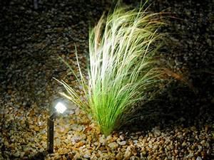 Gartenbeleuchtung Led Leuchten Garten : led gartenbeleuchtung galabau m hler gartenbeleuchtung ~ Michelbontemps.com Haus und Dekorationen