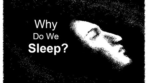 Why Do We Sleep?  Youtube. Injury Signs Of Stroke. Bullying Signs. Cervical Cancer Signs. Deceased Signs Of Stroke. December 8th Signs Of Stroke. Hormonal Signs. Dashboard Signs. Emotional Signs