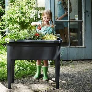 Carré Potager Gamm Vert : carr potager sur pieds elho green basics l76 h65 1 cm ~ Dailycaller-alerts.com Idées de Décoration