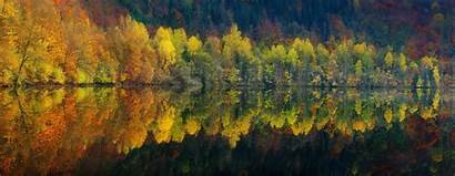 Calm Forest Colorful Nature Fall Water Trees