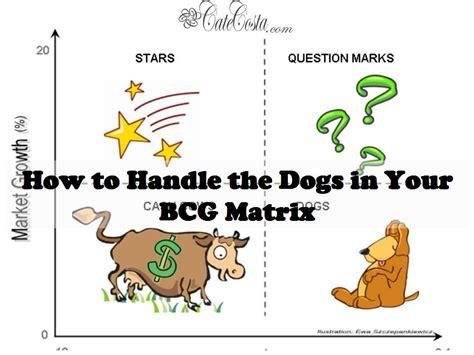 dogs   bcg matrix venture