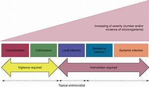 Traditional And Nontraditional Evaluation Of Wound Healing