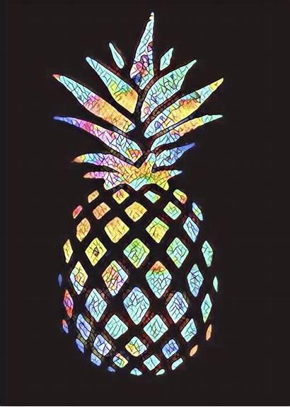 Pineapple Wallpapers Iphone Cool Ananas Colorful Hintergrundbilder