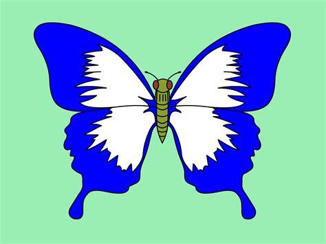 ways  draw  butterfly step  step wikihow