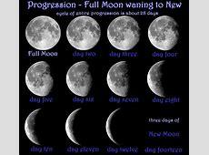 Moon Magick MAGICKWYRD