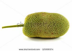 Jack-fruit Stock Photos, Royalty-Free Images & Vectors ...