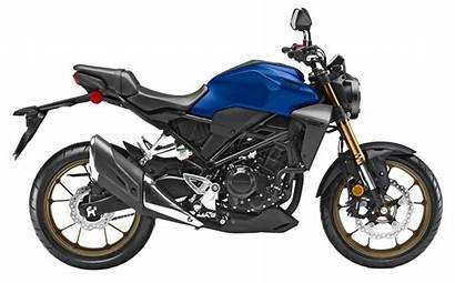 Honda 300r Motos Gris Modelo
