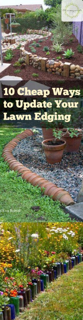10 Cheap Ways To Update Your Lawn Edging  Bless My Weeds