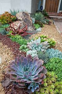 vorgarten gestalten planen sie alles im voraus um fehler With ordinary idee de massif de jardin 7 piante per aiuole da giardino decorazioni per la casa