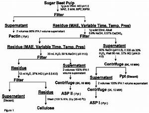 Flow Diagram For The Extraction Of Polysaccharides From