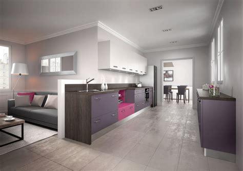 cuisine equipee moderne violette modele harmonie melamine