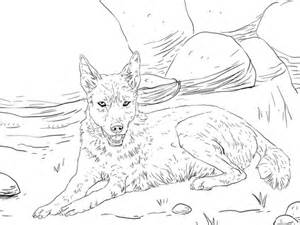dingo lying   ground coloring page supercoloringcom
