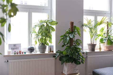 Deko Für Fensterbrett by Fensterbank Innen Dekorieren Myappsforpc Org
