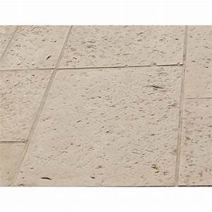 Dalle Pierre Terrasse : dalle terrasse pierre 40 x 60 4 cm blanc ~ Preciouscoupons.com Idées de Décoration