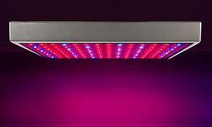Led Grow Set : full spectrum 225 led plant grow light set groupon ~ Buech-reservation.com Haus und Dekorationen