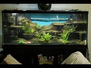 Aquarium Dekorieren Ideen : aquarium selber bauen aquarium deko selber bauen youtube ~ Bigdaddyawards.com Haus und Dekorationen
