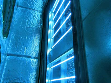 Does UV Light Kill Mold? Let's Find Out! - UV Hero