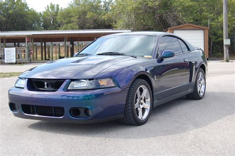 used ford mustang cobra for used ford mustang cobra car autos gallery