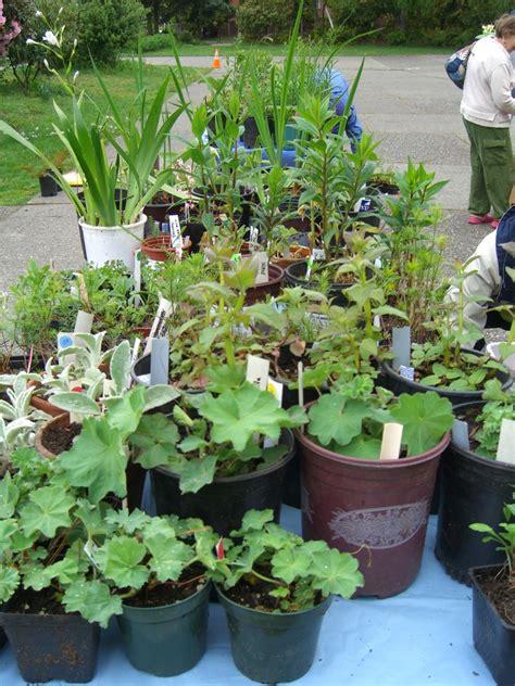 broadview garden club plant sale