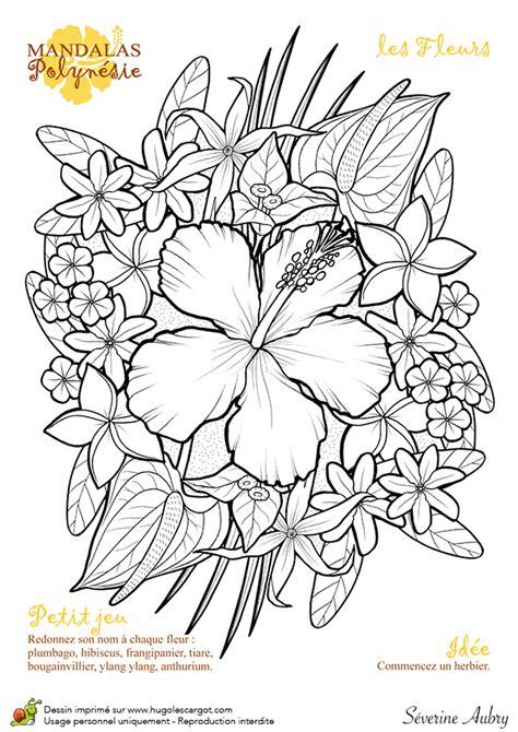 si e du journal le monde dessin à colorier mandalas polynésie fleurs