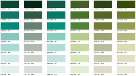 Sage Green Color Olive  Nisartmackacom