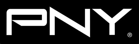 PNY Logo / Computers / Logonoid.com