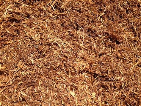 bark mulch medium bark mulch renuable resources cbell river landscape product sales delivery
