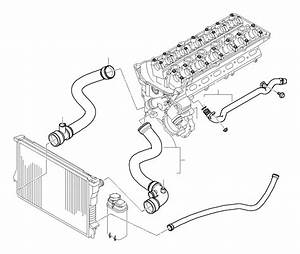 2004 Bmw 325i Return Hose  Cooling  Hoses  Engine