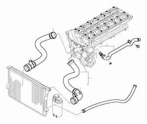 Bmw 328i Water Hose  Cooling  Hoses  Engine
