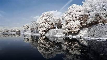 Japan 4k Landscape River Trees Stone Spring