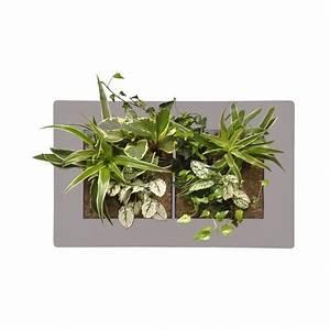 Tableau Végétal Mural : acheter grand tableau v g tal vertical gris cadre ~ Premium-room.com Idées de Décoration