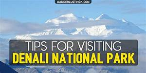 Tips For Visiting Denali National Park In Alaska