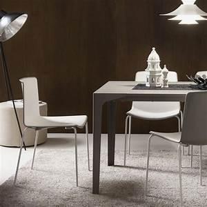 Table A Manger A Rallonge : table salle a manger avec rallonge zendart design ~ Teatrodelosmanantiales.com Idées de Décoration