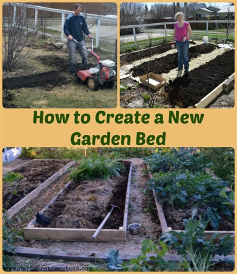 how to start a garden bed home design