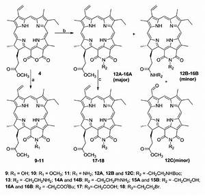 Synthesis Of Purpurinimides Having Active Groups  Reaction