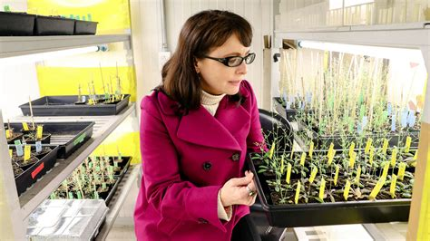 Mexico's new science minister is a plant biologist who ...