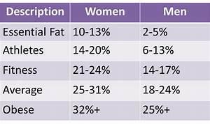 Body Shaping Basics   5 Exercises For Slimmer