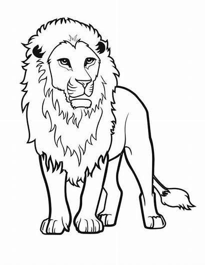 Lion Drawing Coloring Awesome Pages Colorluna Drawings