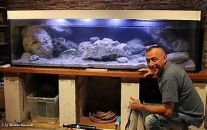 Aquarium Einrichten Beispiele : malawi dekoration aquarien ~ Frokenaadalensverden.com Haus und Dekorationen