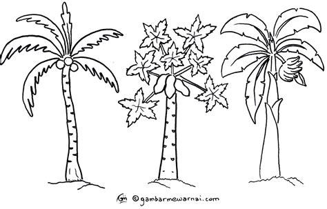 gambar mewarnai pohon terbaru gambar pohon referensi seni