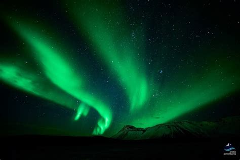northern lights tours northern lights tours in iceland experience the