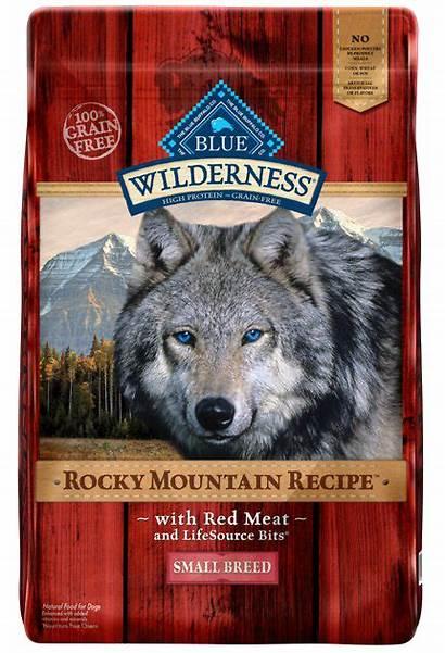 Buffalo Dog Wilderness Mountain Breed Rocky Meat