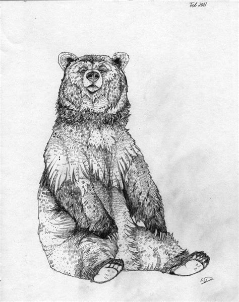 Bear drawing. | ART. Without it, the earth would be EH. | Pinterest | Bear drawing, Bears and