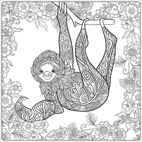 sloth adult coloring page coloring pages  coloring