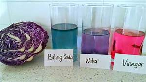 Red Cabbage pH Indicator | Kitchen Chemistry for Kids ...