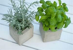 Pflanzen Kübel Beton : diy pflanzen cubes aus beton sch n bei dir by depot ~ Markanthonyermac.com Haus und Dekorationen
