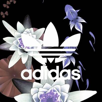 Adidas Shoes Gifs Giphy Skateboarding