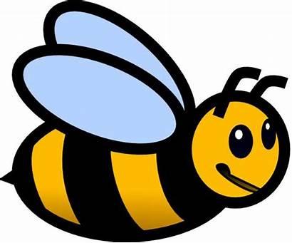 Bee Bumble Clipart Clip Bees Cartoon Clipartmag